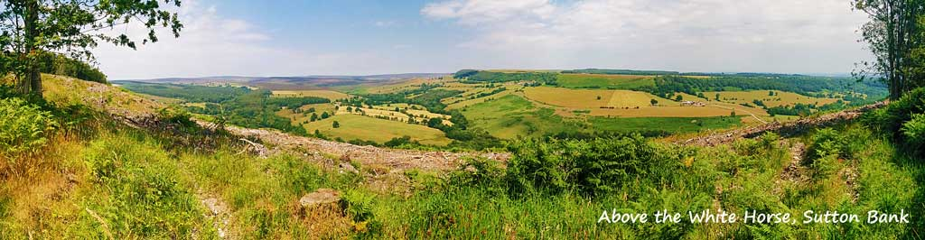 Panorama from above the White Horse